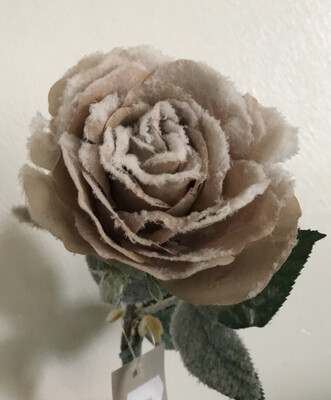 Snow Touch Rose Mink
