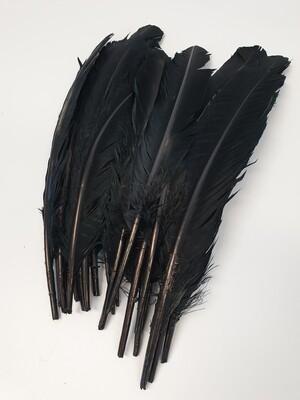 Black Goose Feathers