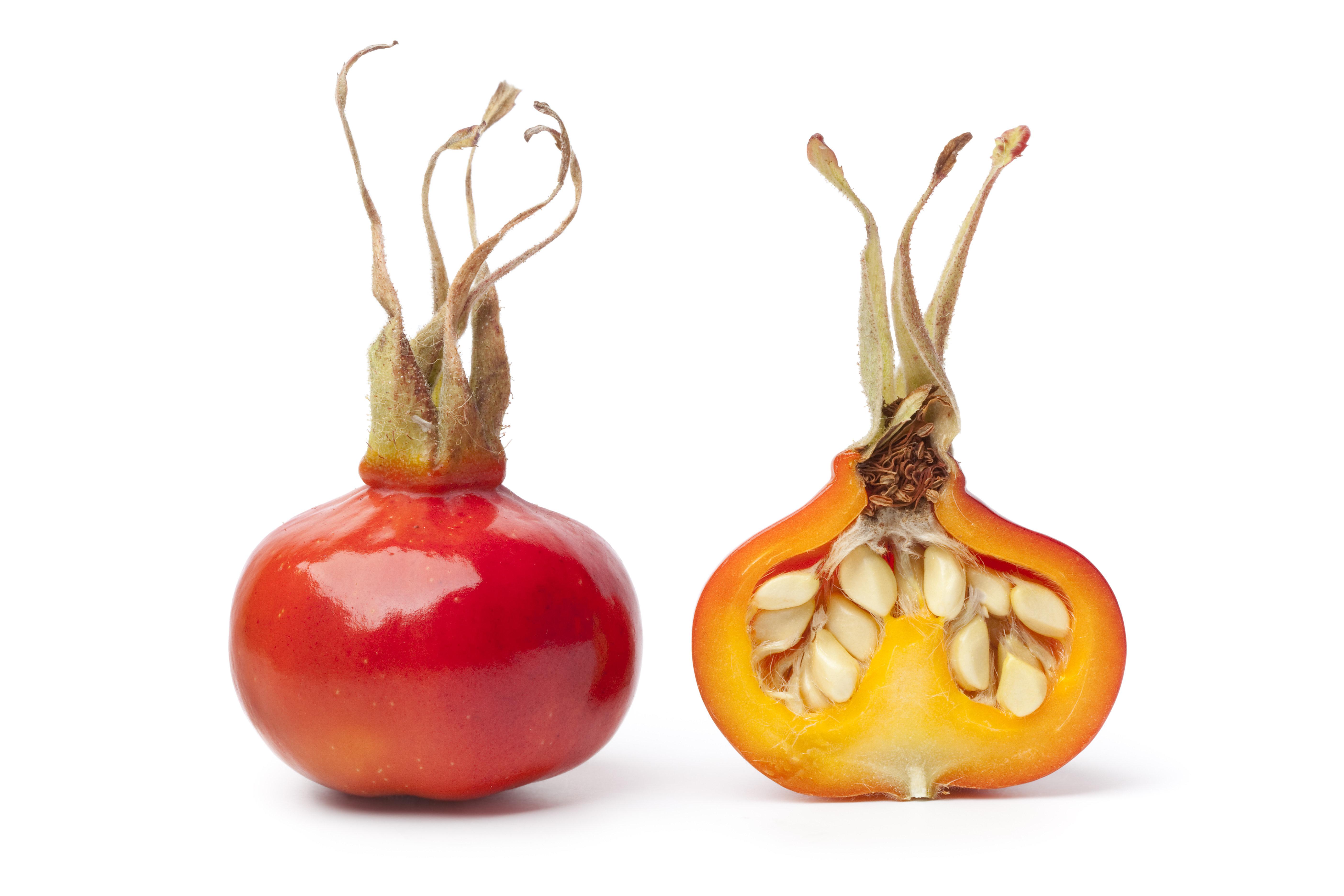 Organic Rose Hip Fruit & Seed