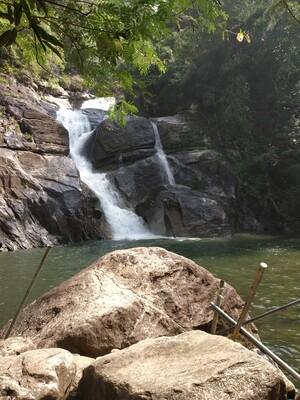 Экскурсия на водопад Понмуди и чайные плантации