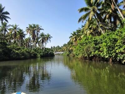 Каналы и заводи Кералы