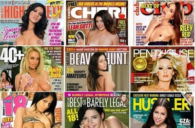XXX Adult Magazines Box (20 Issues)