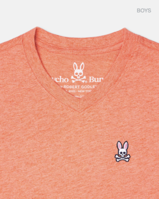 Psycho Bunny boys classic v neck tee - heather gingers