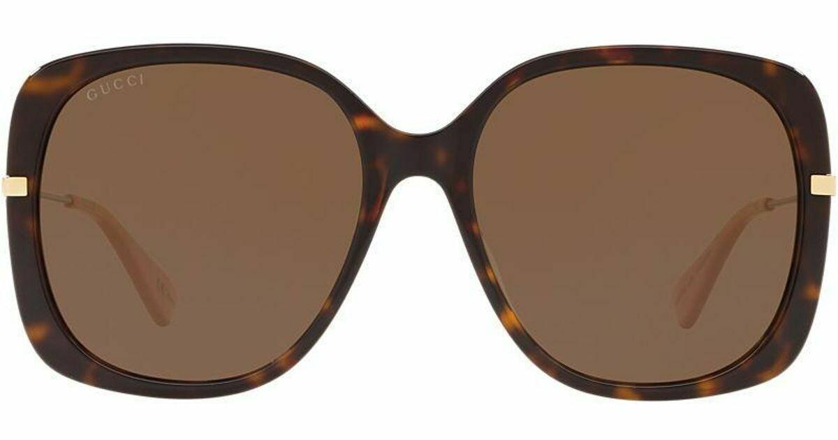 Gucci Acetate Square sunglasses In Havana/Brown