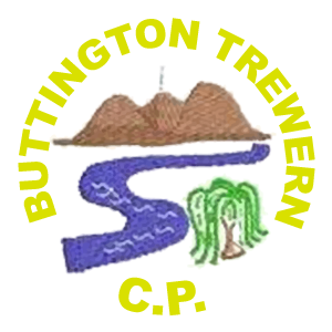 Buttington Trewern County Primary School, Trewern - Autumn 2 2019 - Friday
