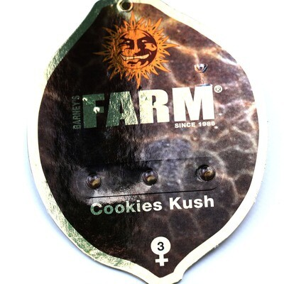 Cookies Kush