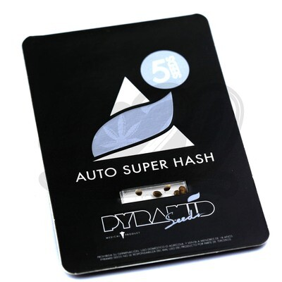 Auto Super Hash