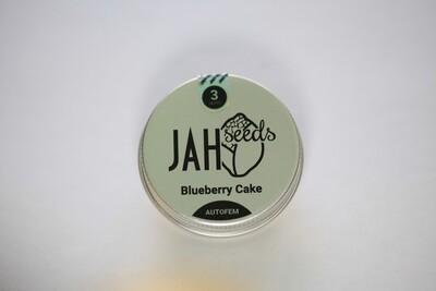 Auto Blueberry Cake