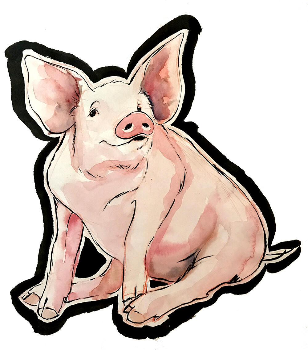 Pig – (print)