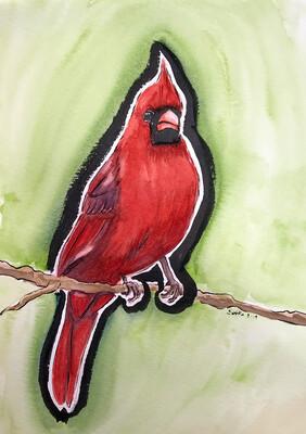 Cardinal – (print)