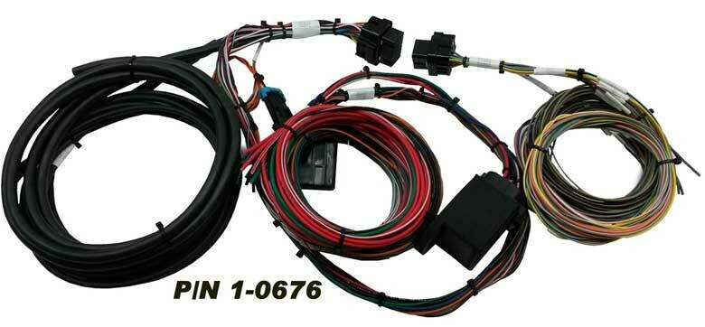 MPS Weeded, Tied and Labeled Holley EFI Harness for HP / DOMINATOR