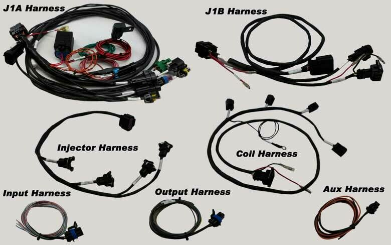 MPS Hayabusa Terminated Holley EFI Harness for HP / DOMINATOR