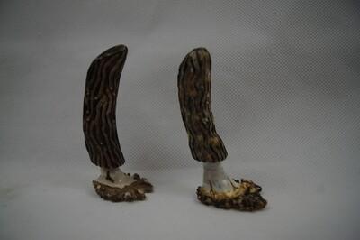 Set of Mule Deer Antler Hand Carved Morel Mushrooms