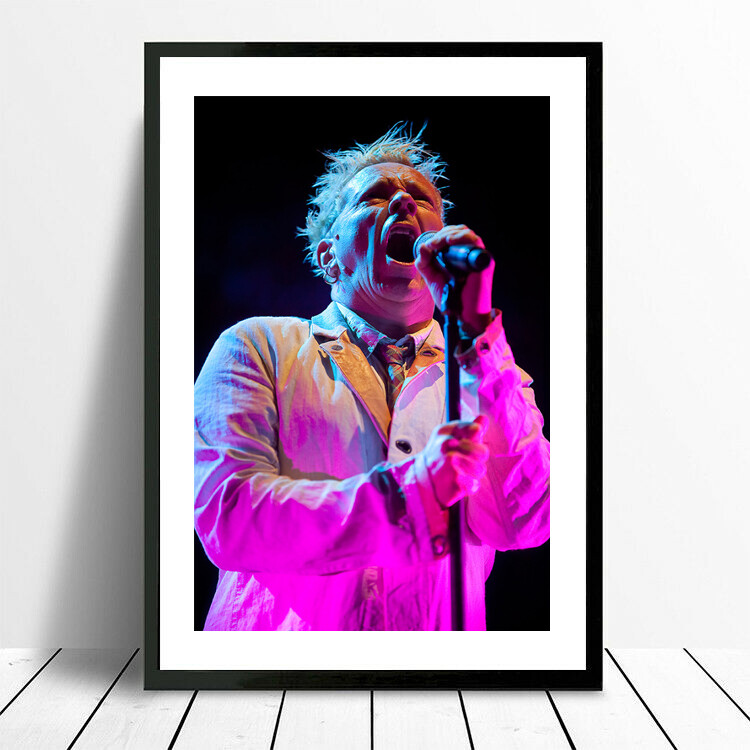 Sex Pistols | Johnny Rotten