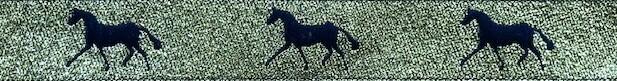 Horse Binding- Gold/Navy Horse