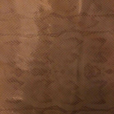Brown Snake  Print no.4