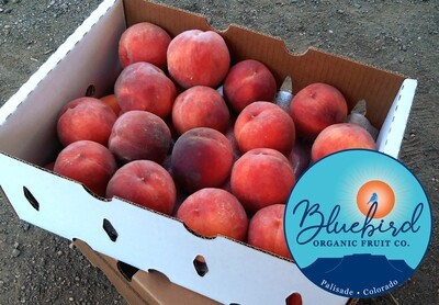Donate a Box of Organic Palisade Peaches to FoCo Cafe