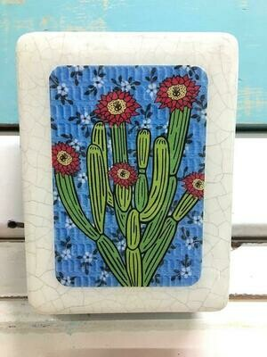 Mini Woodblock - Pipe Organ Cactus