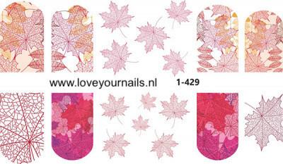 Esdoornblad 1-429
