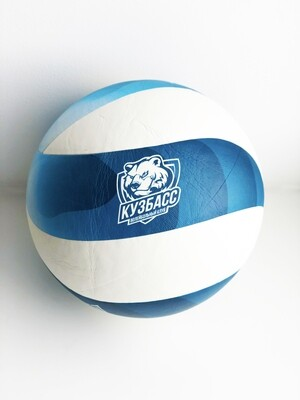 Сувенирный волейбольный мяч