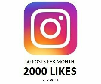 2000 Instagram Likes on Each Post Per month