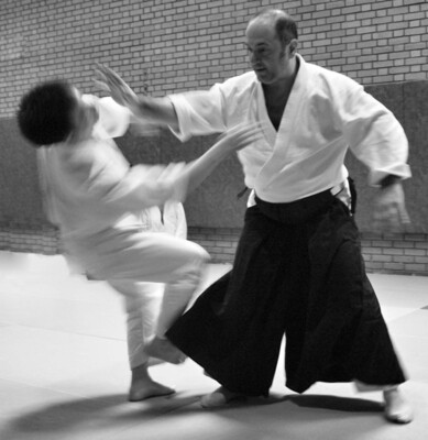 Beginners Aikido