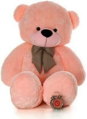 Best Tedy Bear