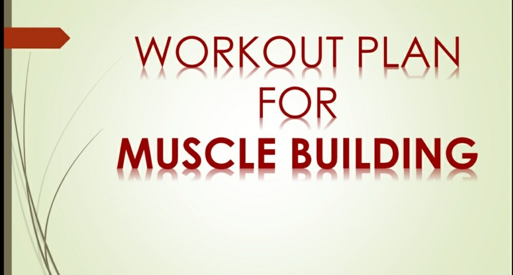 WORKOUT PLAN FOR MUSCLE BUILDING