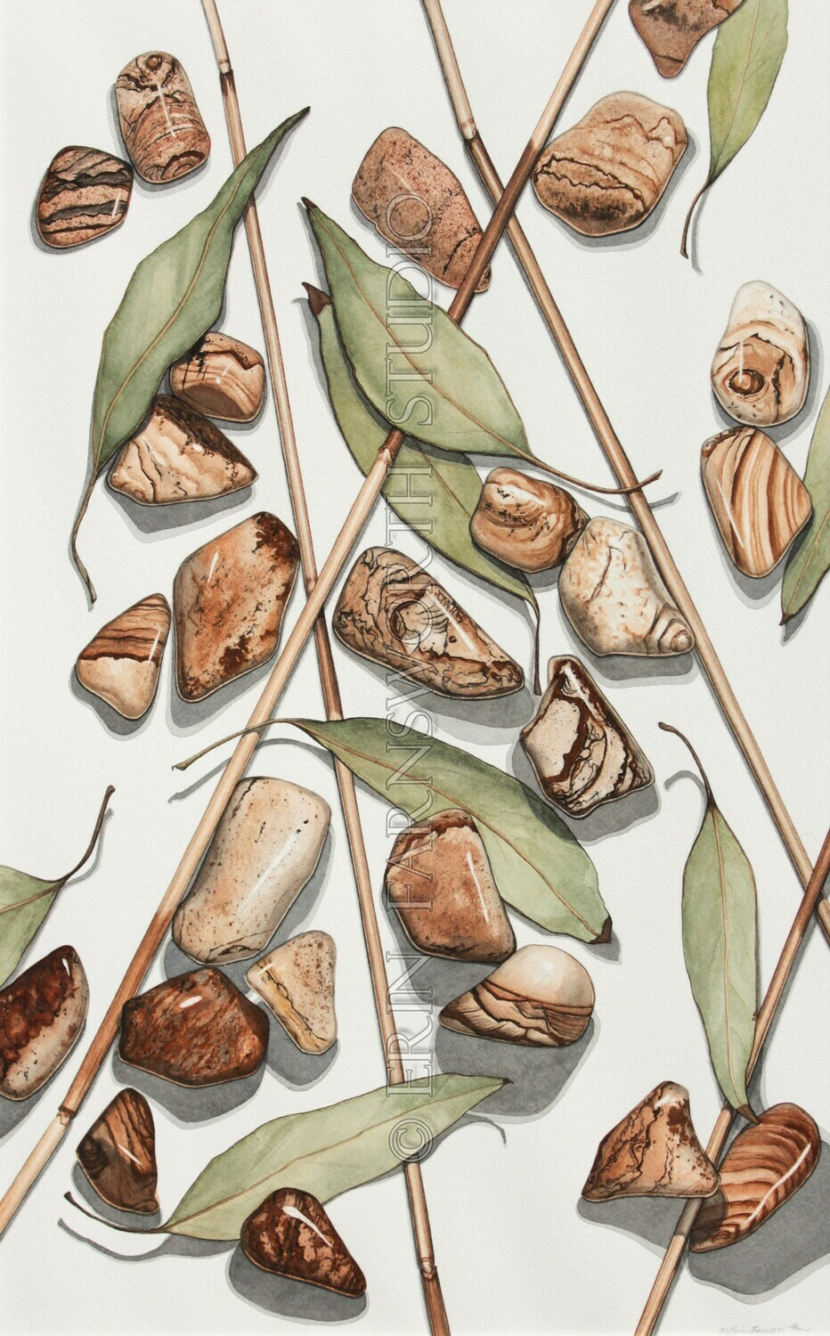 """Reeds, Leaves and Picture Jasper"" 11x17 limited edition print"