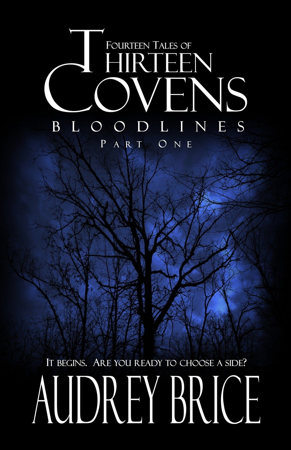 Thirteen Covens (Con Bundle)
