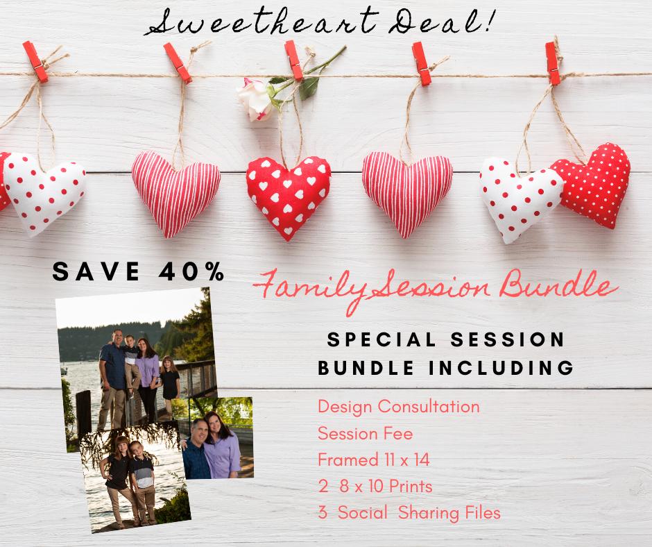 Hudson's Family Session Bundle - Save $400!