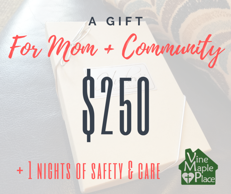 $250 Gift Certificate - 1 Night of Safety!