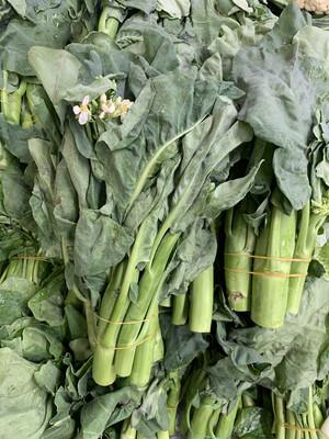 GL30 Gai Lonh Chinese Broccoli 30Lb