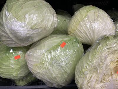 TCAB35 Taiwan Cabbage 35Lb