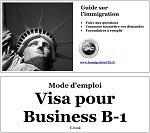 Visa Business B-1