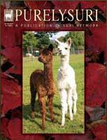 PurelySuri Magazine Advertising