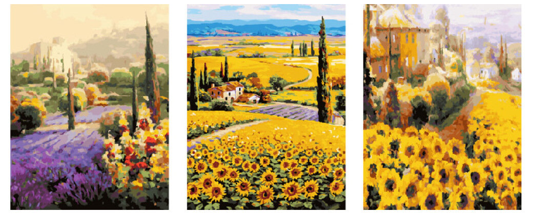 Картина по номерам PX 5260 Цветочные поля 40*50*3
