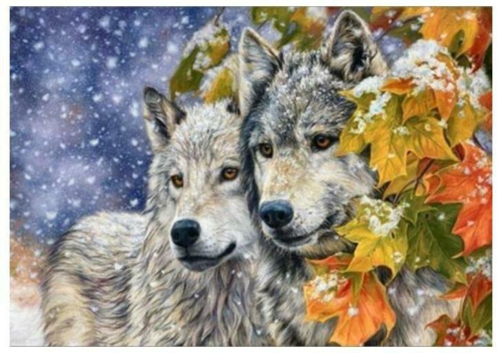 Картина по номерам GX 8416 Волчья пара 40*50