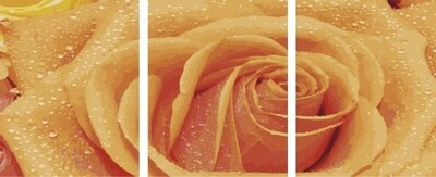 Картина по номерам, триптих 40x50 см - KX-0118