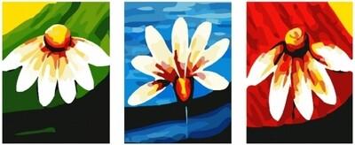 Картина по номерам, триптих 40x50 см - Ромашки