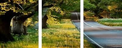 Картина по номерам, триптих 40x50 см - Трасса