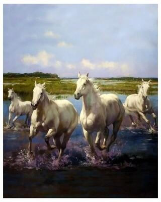 Картина по номерам 40х50 - Белые лошади, 40х50 см