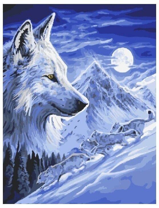 Картина по номерам GX 8532 Одинокий волк 40*50