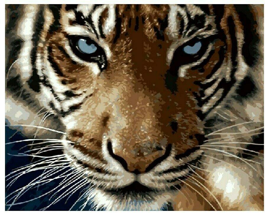 Картина по номерам GX 8767 Взгляд тигра 40*50