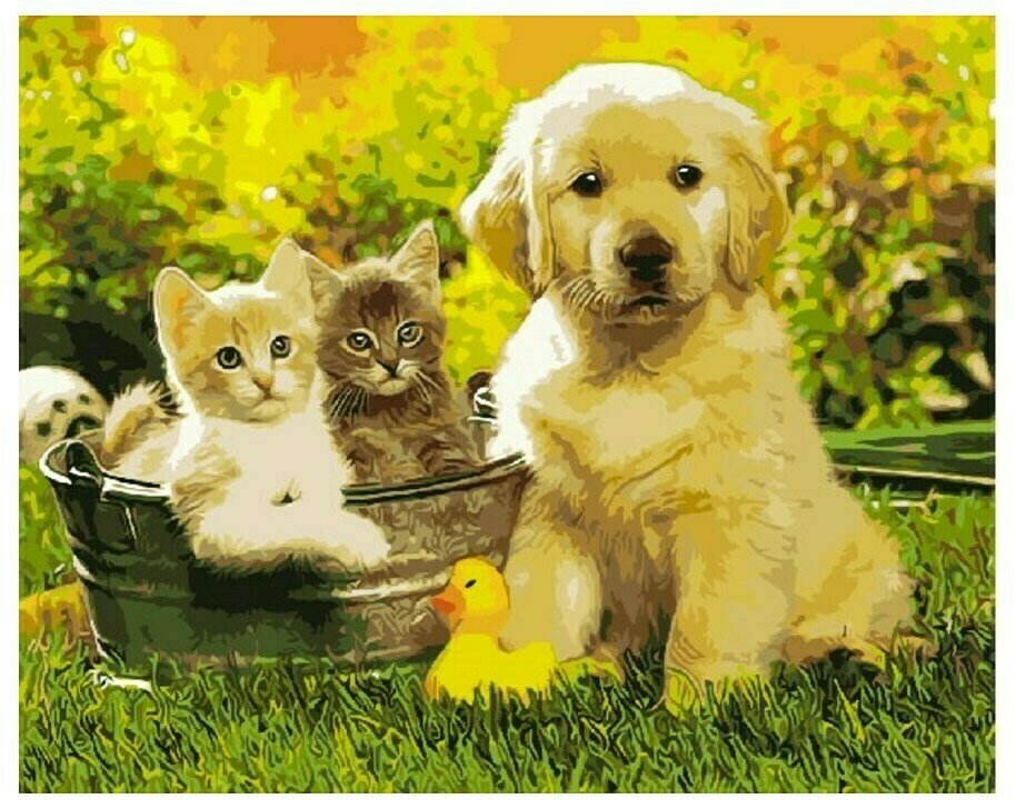 Картина по номерам GX 9476 Щенок и котята 40*50