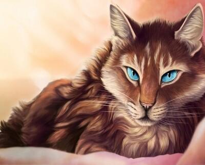 Картина по номерам 40х50 - Голубоглазый кот