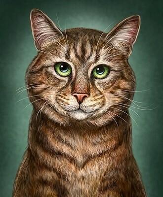 Картина по номерам 40х50 - Умный кот