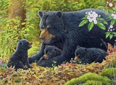 Картина по номерам 40х50 - Чёрные медведи