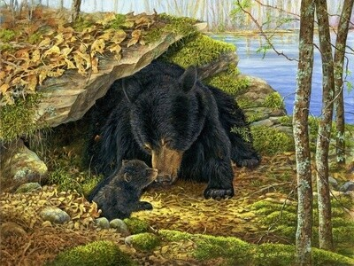 Картина по номерам 40х50 - Медведица с медвежонком