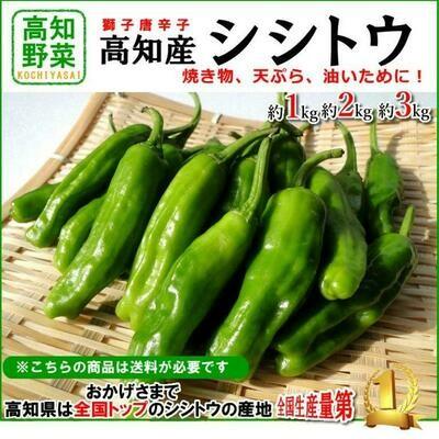 Сладкий Японский Чили Перец Шишито Тогараши - Shishito Togarashi  - シシトウガラシ